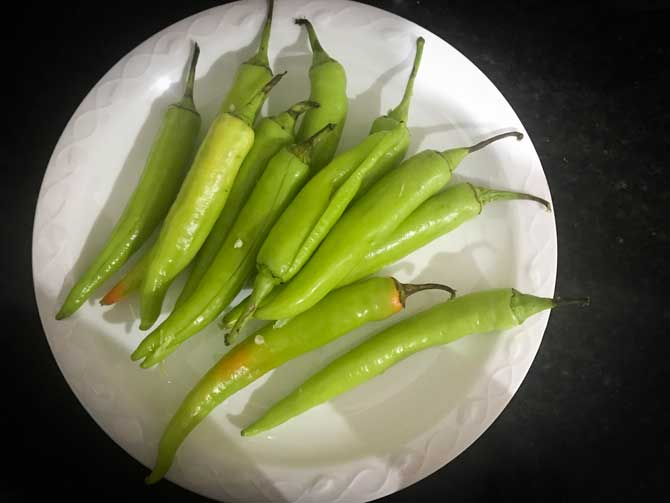 Slit green chilies on white plate