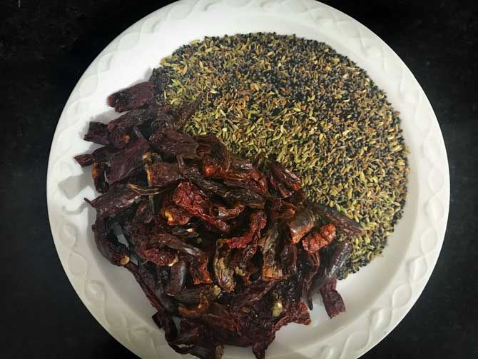 Roasted dried red chilies and seeds on white plate